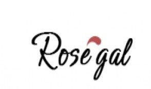Rosegal fr [closing 26/12/2018]